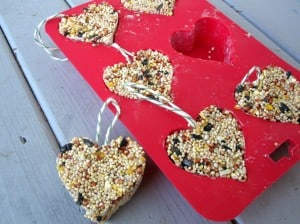 No Time for Flashcards- All Natural Valentines Day Treats