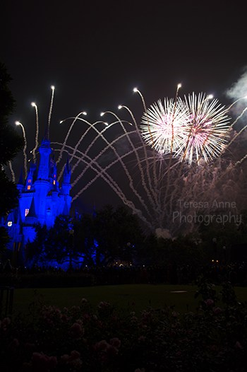 "One ""prime"" spot for fireworks was over in the Rose Garden.  As you can see, it's not the best spot for picture taking."