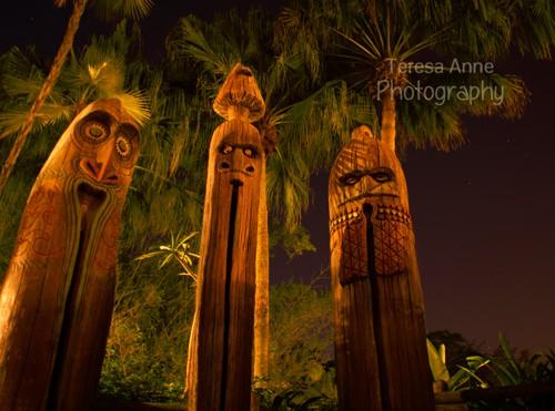 Tiki Torches at Disney's Magic Kingdom f/stop: 2.8 shutter speed: 30 seconds ISO: 100 Lens: 20mm f/2.8