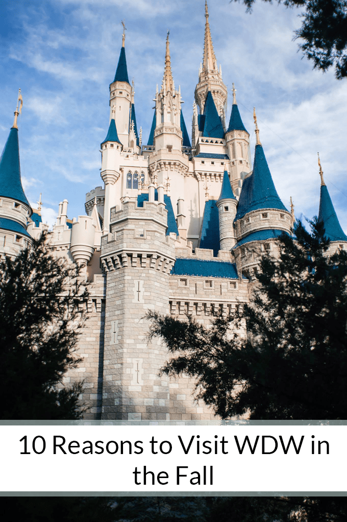 WDW in the Fall is the best time to go because of all the special events, cool weather, and low cost/crowds. Need more convincing? Here are 10 reasons to book a trip now!