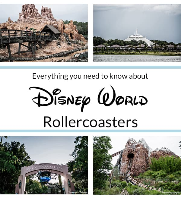 Everything you need to know about Disney World's rollercoasters