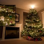 How to photograph Christmas Trees