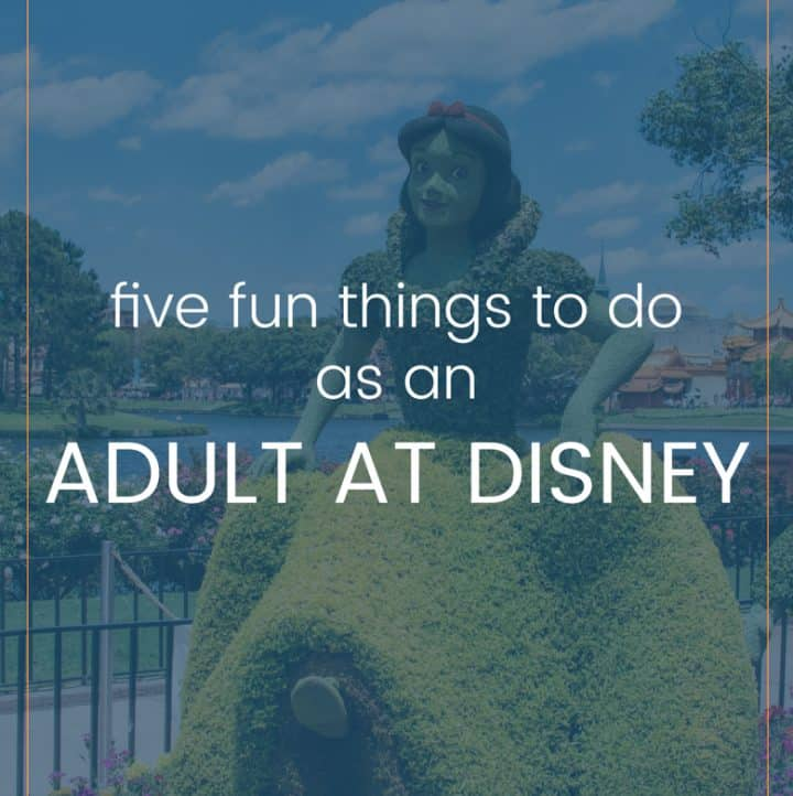 5 Activities for Adults at Disney World