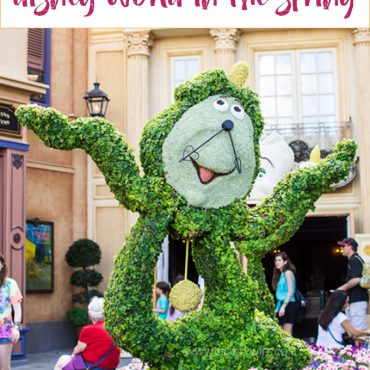 What You Need to Know About Disney World in the Spring