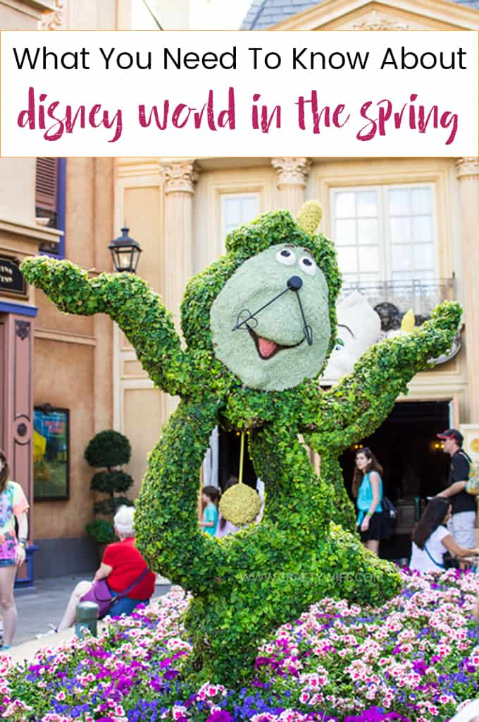 Four tips to help you plan the perfect vacation to Disney World in the Spring! Learn what weeks to avoid, what events to go to, and what you need to pack!