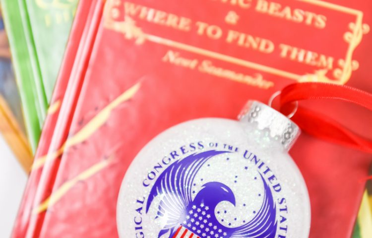 Harry Potter Crafts | Christmas Ideas | Christmas Crafts | Harry Potter Ornaments