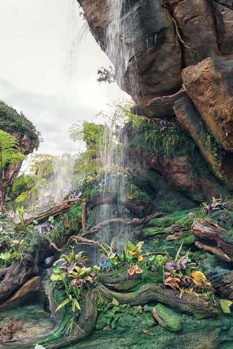 Disney's Pandora the World of Avatar | Disney World | Disney Travel | Disney Travel Tips | Disney Vacation Tips | Disney's Pandora | Disney World | Disney World Reviews