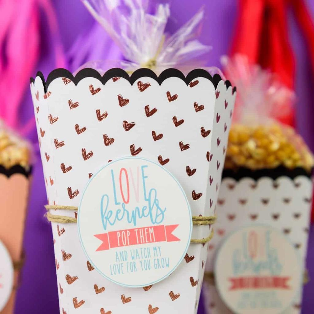 Valentine Popcorn Gift Bags - After Christmas I'm all candied out, so I tend to snack on popcorn instead. We typically don't pop our own but I couldn't resist trying it just so I could make these Crazy Ex Girlfriend inspired popcorn gift bags!