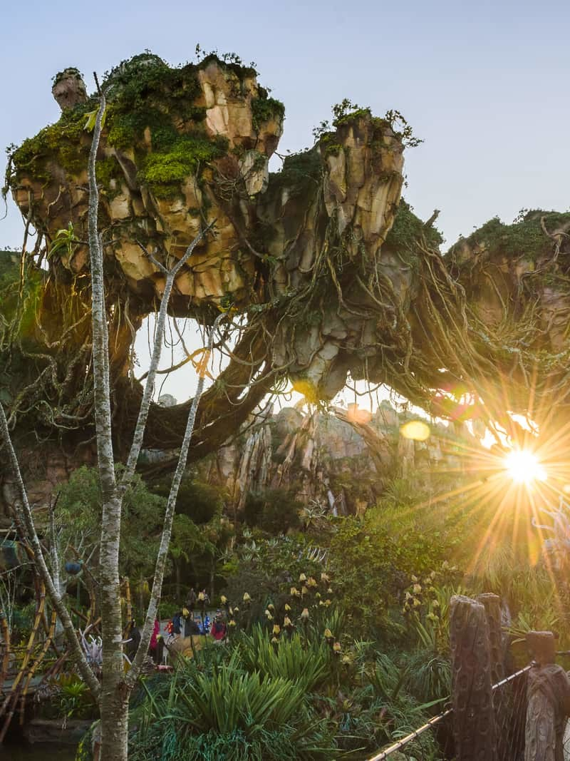 Skip Long Lines at Disney's Pandora - If you're sick of refreshing the Fastpass+ page and praying that Fastpasses for Pandora will magically appear, you're not alone! If you're sick of waiting for them to just show up on the My Disney Experience App but want to go on the ride anyway, there are a few ways you can skip the long lines at Pandora but still go on the ride!
